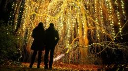 Lichter für die Weihnachtsstimmung