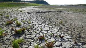 Klimaexperten warnen vor gewaltigem El Niño