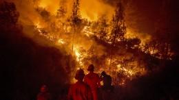 Verzweifelter Kampf gegen Rekord-Feuer