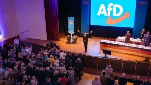 AfD stellt siebenstellige Summe für Wahlkampf bereit