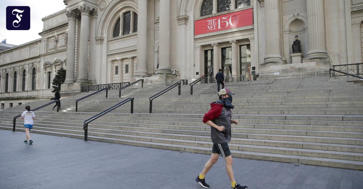 Amerikanische Museen: Was wird aus der kulturellen Grundversorgung?