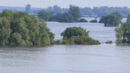 Weiter angespannt: die Hochwassersituation an der Elbe in der Tangermünde