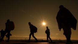 Ein Unternehmensberater bringt Migranten nach Deutschland