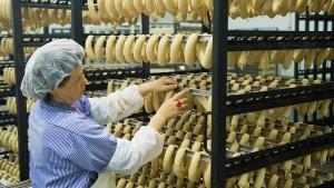 Koalition beschließt Sonderrecht für Grillwurst-Unternehmen