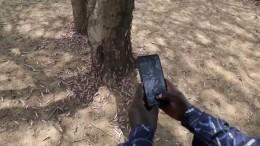 Heuschrecken jagen per App