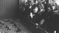 Passanten betrachten das Warenangebot im Schaufenster eines Schuhgeschäftes am Tage nach der Währungsreform, aufgenommen am 20. Juni 1948.