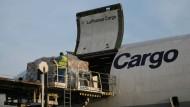 Piloten kündigen Streik bei Lufthansa Cargo an