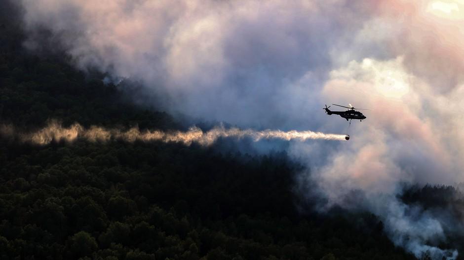 Größter Waldbrand seit der Wende