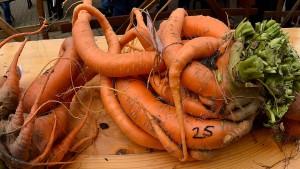 Supermarktkette verkauft Obst und Gemüse mit Macken