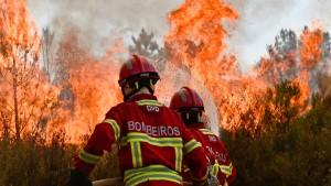 Waldbrände in Frankreich und Portugal wüten weiter