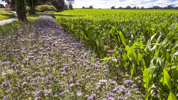 Das neue Zauberwort der Agrarpolitik