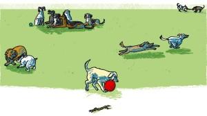 Hund in der Huta