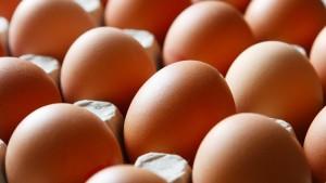 Weitere mit Fipronil belastete Eier entdeckt