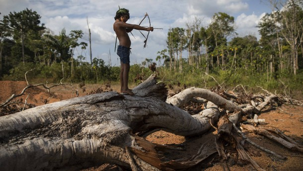 """Salgado fürchtet """"Genozid"""" in Brasilien"""