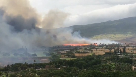 Waldbrände auf Maui