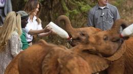 Melania Trump solo in Afrika