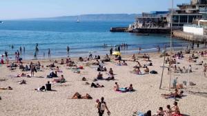 Pitbulls verletzen zwei Kleinkinder am Strand von Marseille