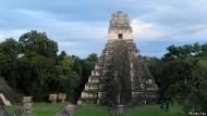 Rettung für den alten Regenwald der Maya