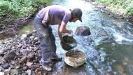 Franzose fischt zufällig Edelsteine aus Fluss