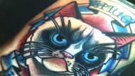 Katzenporträts verewigt auf der Haut