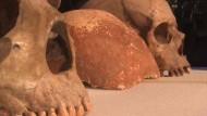 55.000 Jahre alter Schädel gefunden
