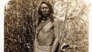 Billig waren sie nicht, die hundertsechzehn Abzüge mit Indianerporträts, die ein Kollege dem Kunsthändler Paul Bingham vor zwanzig Jahren angeboten hatte. Aber wenn er sie einzeln verkaufte, rechnete Bingham aus, würde sich ein gewisser Profit machen lassen. Also griff er zu.