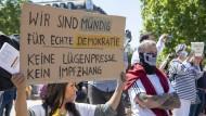 Gegen die aktuelle Politik: Demonstranten in Frankfurt am Sonntag
