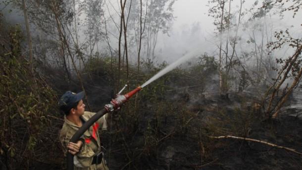 Brände in Russland -  Notstand verhängt