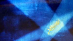 Polanski, Kaurismäki und Leigh konkurrieren um Goldene Palme