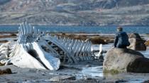 Szene aus Leviathan: Der Film entwirft ein Bild des Landes, dass der russischen Gesellschaft vielerorts nicht passt.