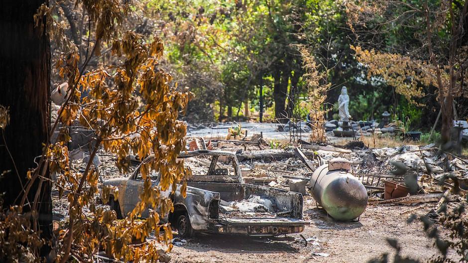 Nach dem Feuer in Felton, Santa Cruz County, Kalifornien