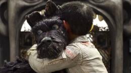 Kinder und Hunde an die Macht!