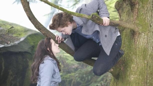 Bella und der schöne Vampir