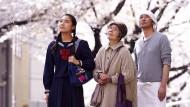 """Allerschönstes Bilderbuchjapan: """"Kirschblüten und Rote Bohnen"""" von Naomi Kawase."""