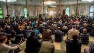 In der großen Moschee in Brüssel vor den ersten Freitagsgebeten nach den Anschlägen