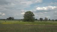 Mehr als nur Birnbäume im Havelland: In seinem neusten Film ist Bernhard Sallmann schon zum viertel Mal auf den Fersen Fontanes unterwegs.