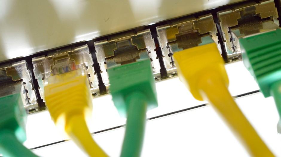 Ohne sie geht nichts im Internet: LAN-Kabel mit angespritzter Knickschutztülle