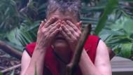 Augen auf bei der Dschungelwahl: Rolf Scheider schaut lieber nicht zu