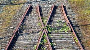 Ein Silberstreif am Bahndamm
