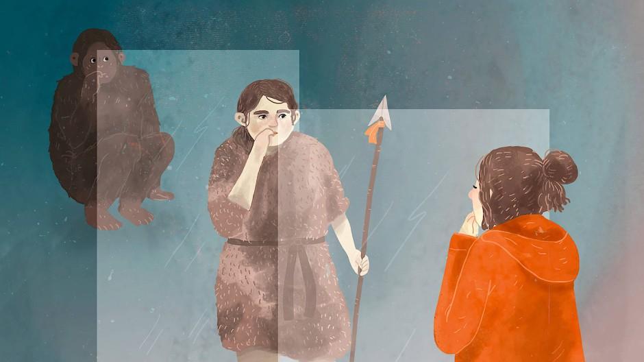 Wie in einem Spiegel: drei Stadien der Evolution