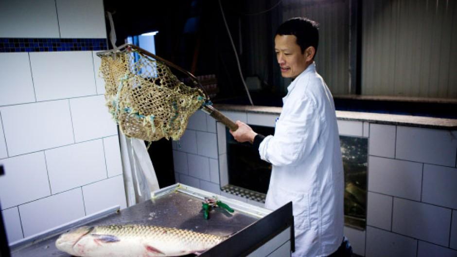 frische Fische, falsche Blumen, Zitronengras: In den Hallen des Dong Xuan Center in Lichtenberg
