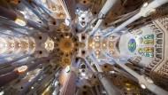 """""""Einst war für uns alle die Natur der Mittelpunkt des Glaubens"""", heißt es bei Dan Brown: Das Deckengewölbe von Antoni Gaudís Basilika Sagrada Família in Barcelona."""