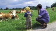 Landidyll: Ein zwei Jahre altes Kind und seine Mutter schauen in Oberbayern Kühe an – und die Kühe schauen zurück.