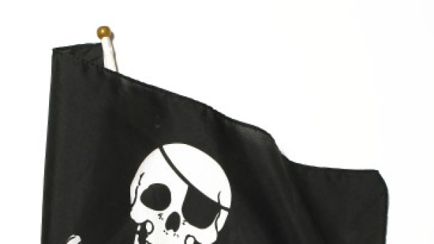 Die Revolution der Piraten