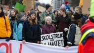 "Und Greta Thunberg mittendrin: ""Fridays for Future""-Demonstranten am 1. März in Hamburg"