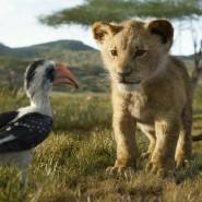 """Szene aus Jon Favreaus computergenerierter """"König der Löwen""""-Variante aus dem Jahr 2019"""