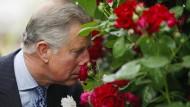 """Prince Charles schnuppert an einer """"Highgrove""""-Rose bei einem Besuch der Chelsea Flower Show in London. Wenn er seine hochherrschaftliche Nase aus den Fenstern von Highgrove hält, umfängt ihn jedoch das Aroma von Thymian."""