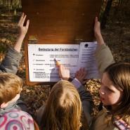 Draußen lernen: Außerschulische Lernräume im Wald sind vielen Stadtkindern völlig fremd und werden immer wichtiger. Eine Schulklasse an den Stationen des Forsterlebnispfades