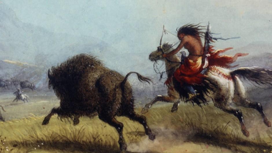 Eine Shoshone-Indianerin auf Bisonjagd: Warum sollten unsere weiblichen Vorfahren nur in der Höhle gesessen haben?