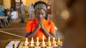 Schach spielen, bis die Brille bricht